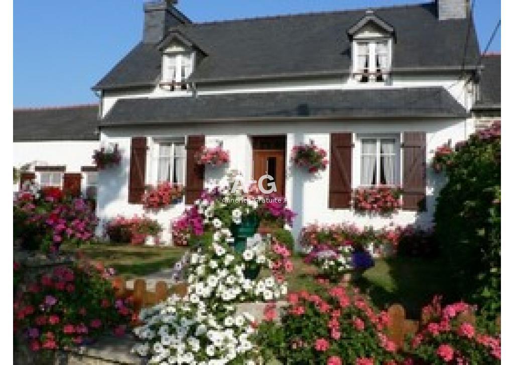 Location nle Grand Hortensia Pleyben centre Finistère